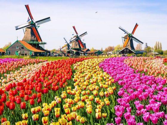 Roteiro Bélgica, França e Holanda na Primavera